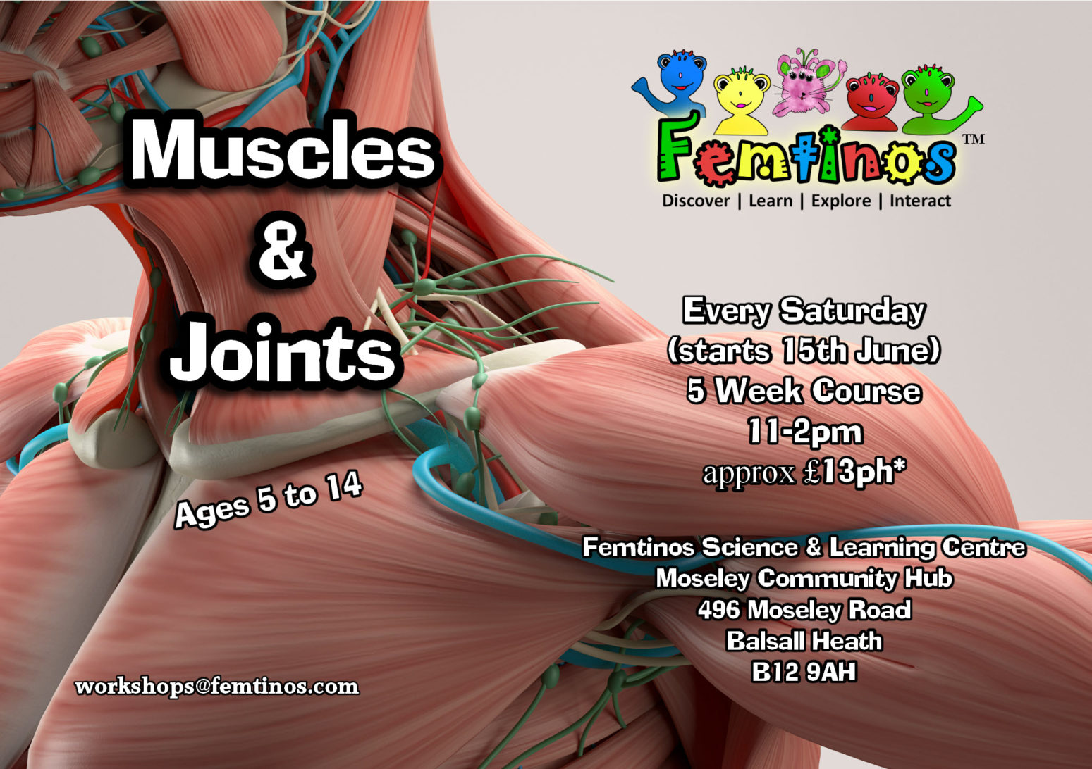 Muscles & Joints Advert