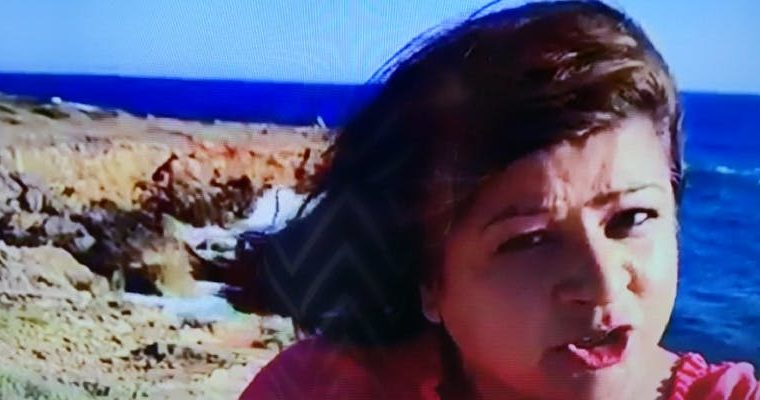 A picture of artist Salma Zulfiqar looking at the camera wich a cliff and beach in the backgrounds